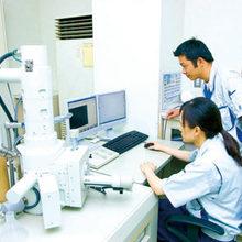 <p>走査型電子顕微鏡による解析</p>